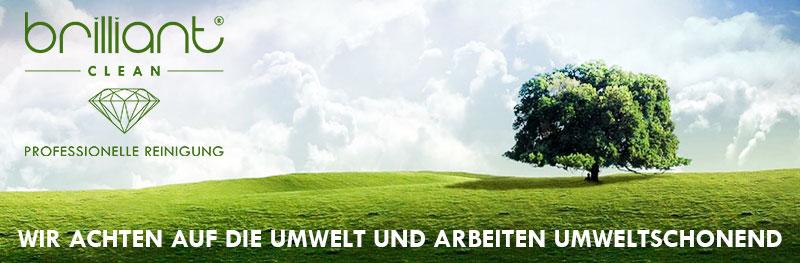 Fensterreinigung in Tirol - Umweltfreundlich